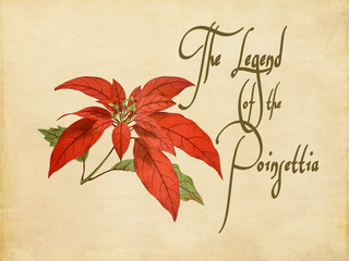 "BREAKING NEWS: ""The Legend of the Poinsettia"""