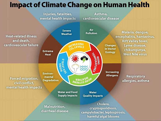 Health and Climate poster.jpg
