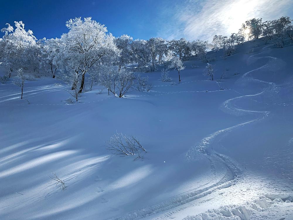 Otari Backcountry Snowboarding, Nagano, Japan