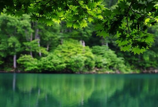 Kama-ike in Spring, Otari, Nagano.jpg