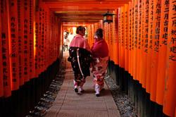 Japanese Culture Tour, Kyoto