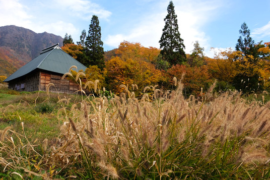 Fall Scenes, Otari, Nagano.jpg