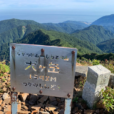 Tsugami 30.jpg