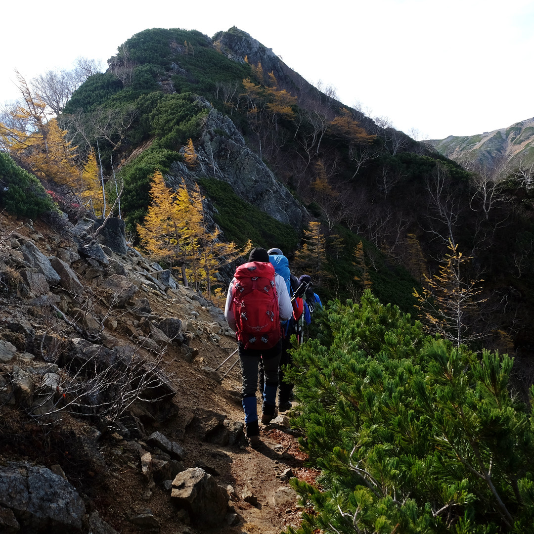 Fall Colors on the Trail, Nagano