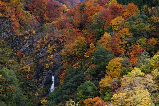 Fall Waterfall, Otari, Nagano.jpg