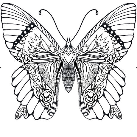 Large floral butterfly.jpg
