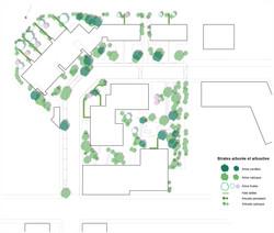 MLH_AMF arbres site200e 180514