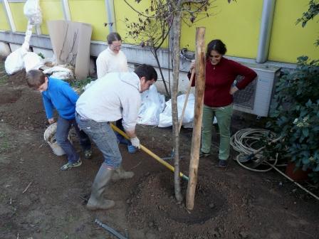 assistance maitrise oeuvre jardin gourmand _6_
