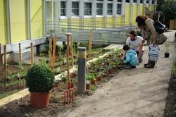 assistance maitrise oeuvre jardin gourmand _2_