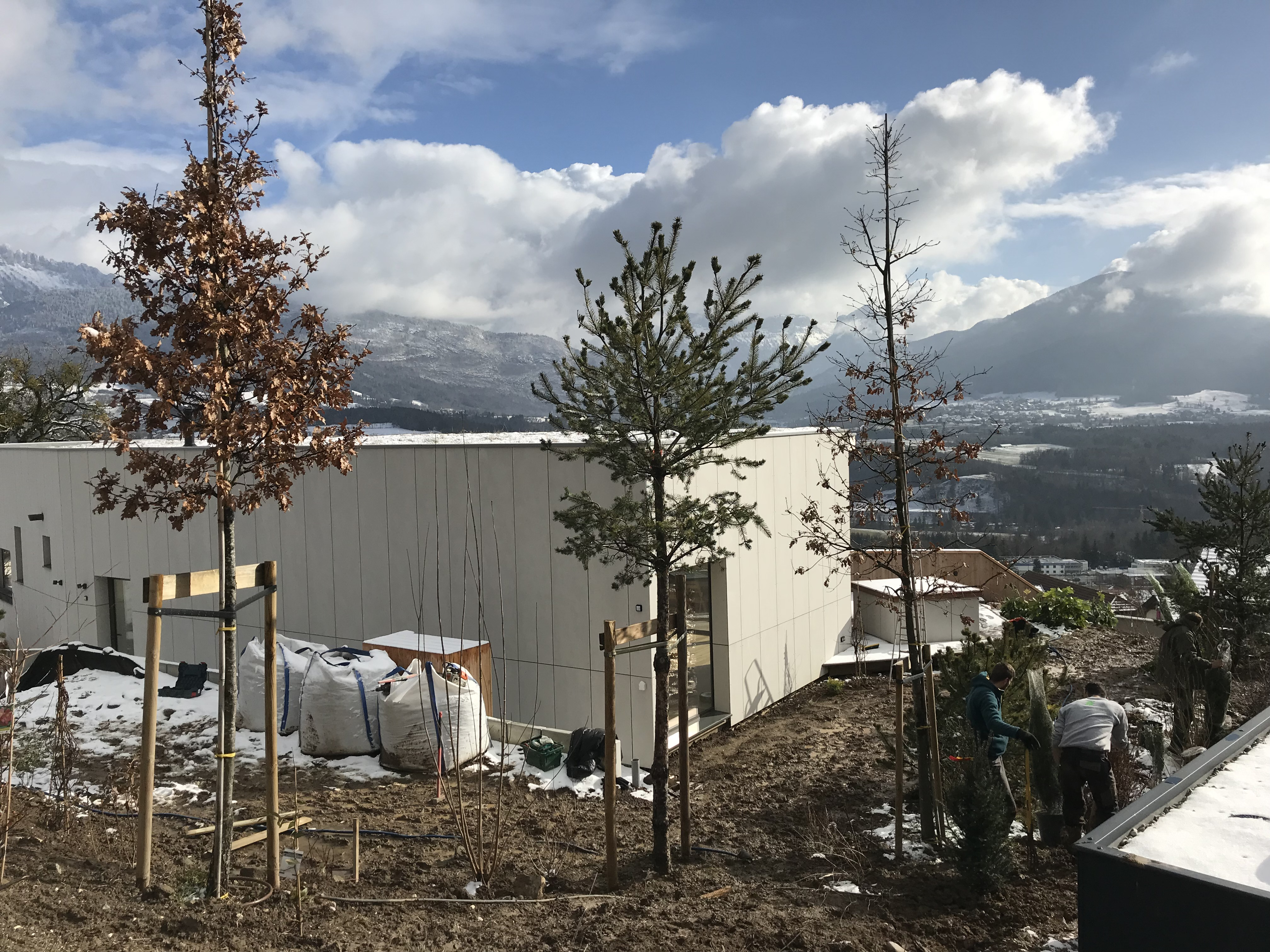 Plantation des arbustes - 12/2018