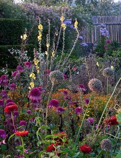 Jardin Vivaces massifs