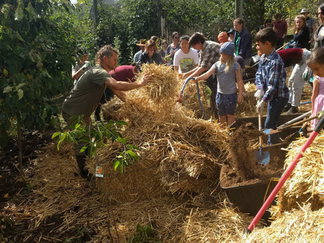 Permaculture at Telopea Mountain