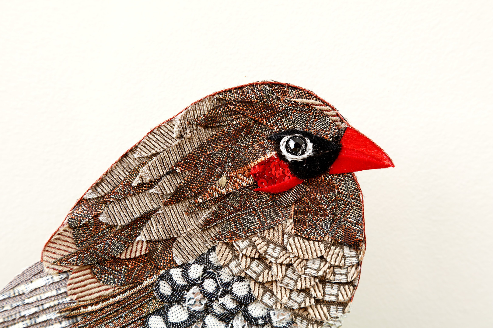 Details of Fire-tail finch