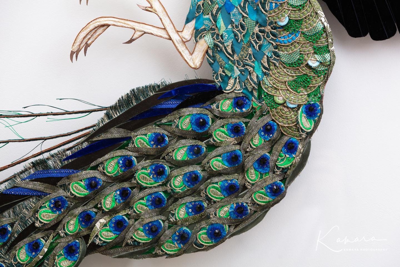 Peacock spots
