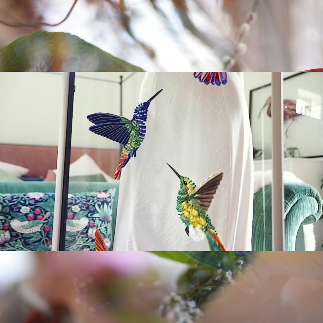 Flying Hummingbirds Film