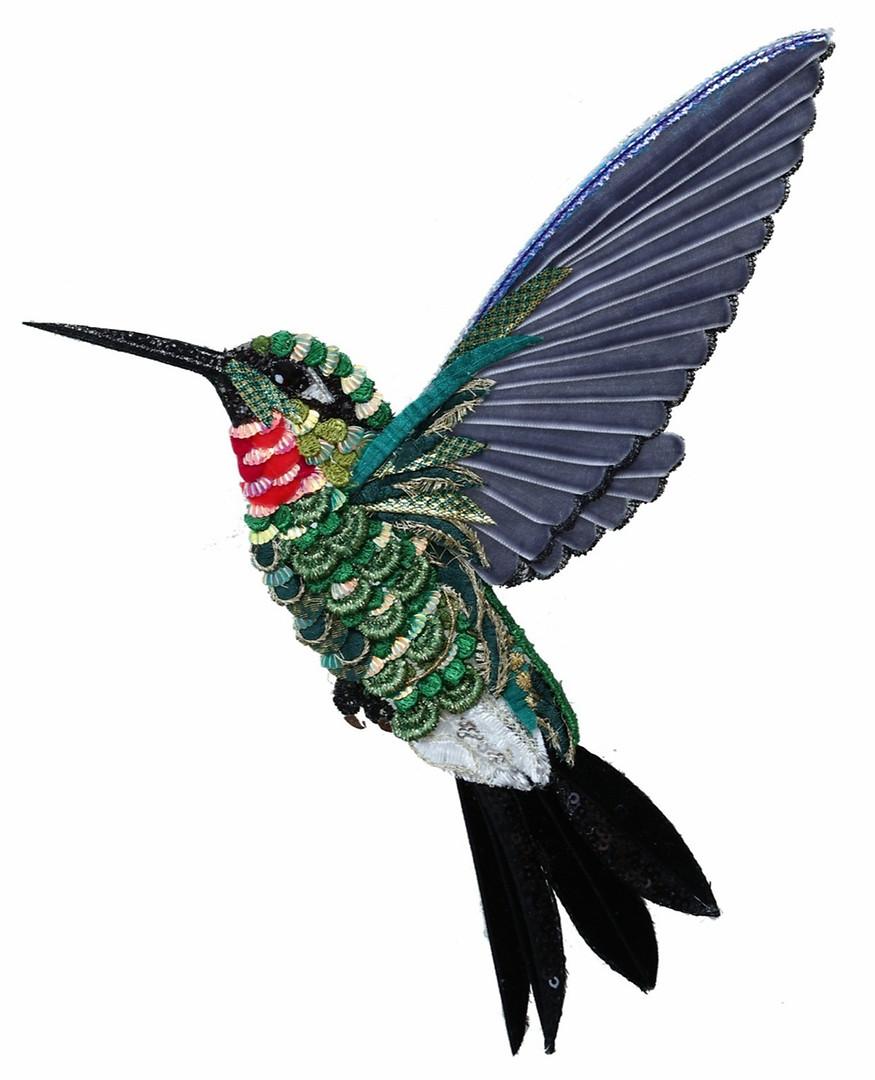Verde Hummingbird