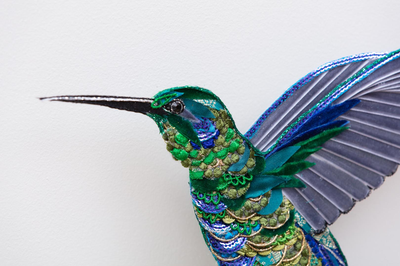 Green Hummingbird Close up