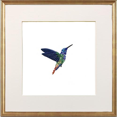Indigo Hummingbird