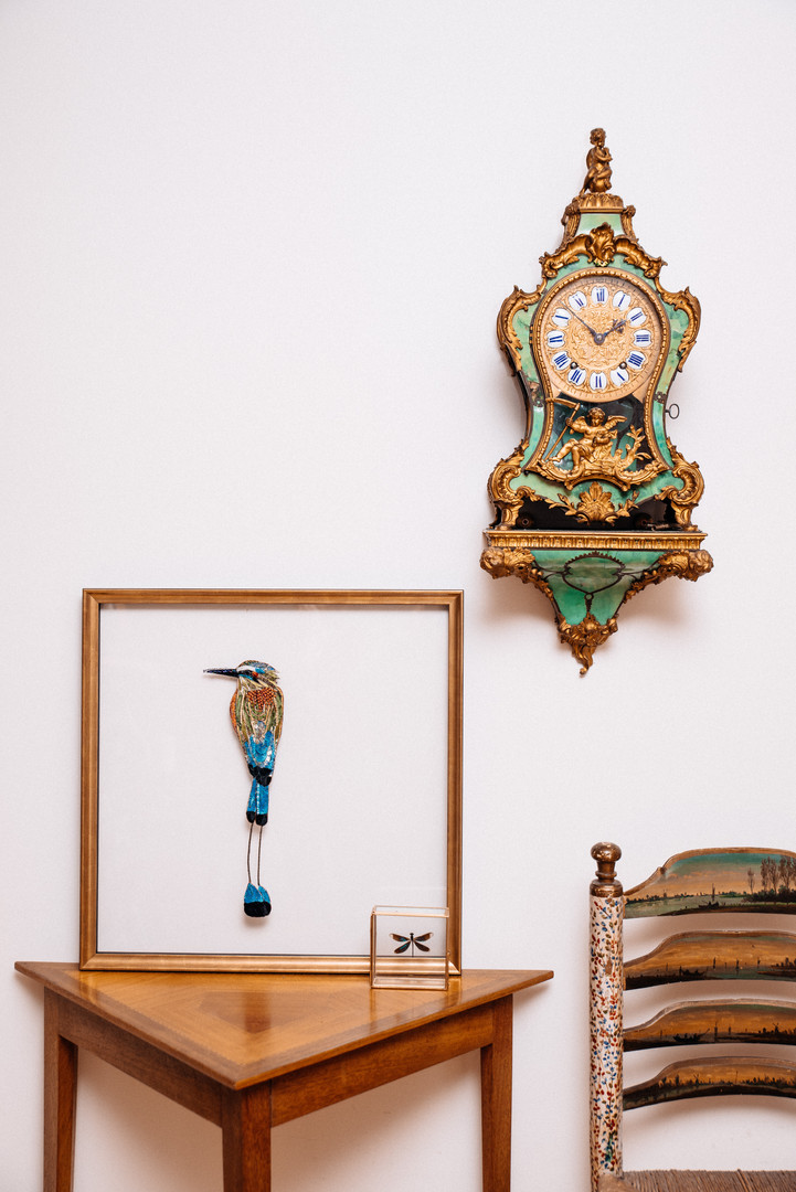 Blue Crowned Motmot Art - Lily Adele Art