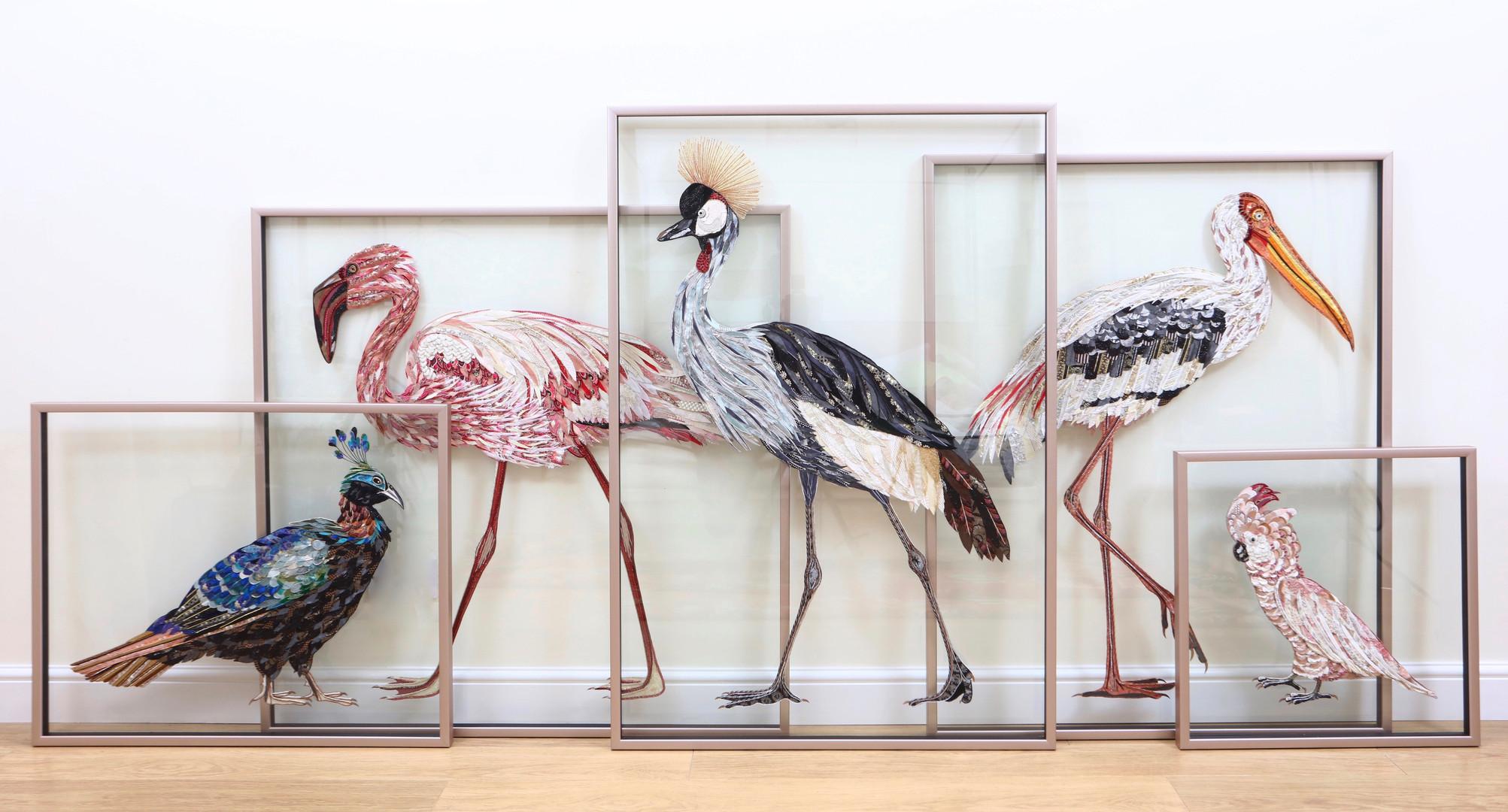 Complete set of five birds