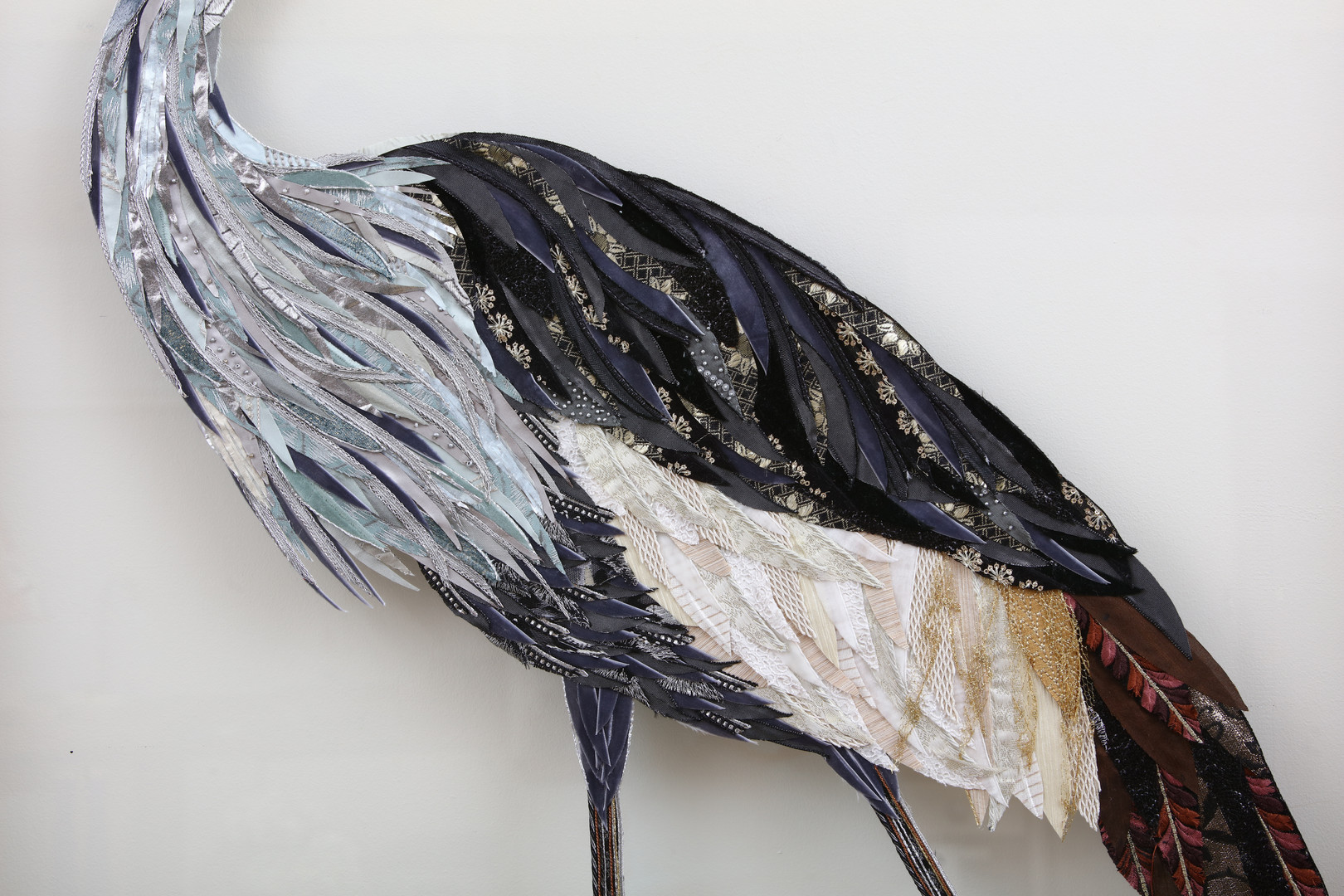 Grey Crowned Crane body