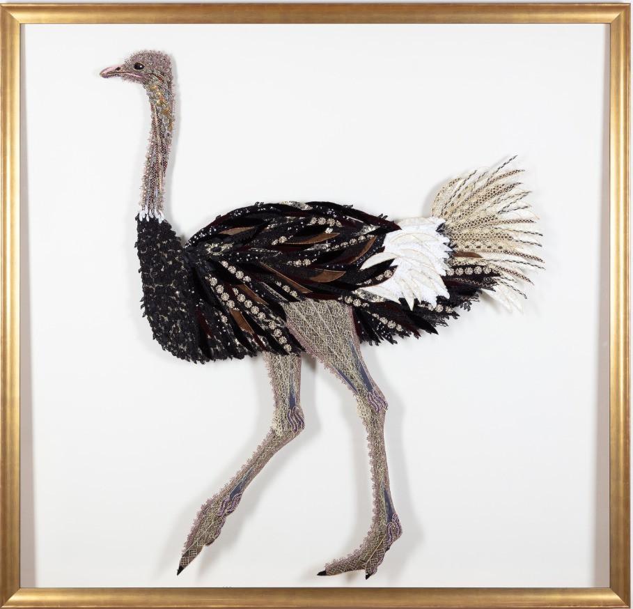 Framed Ostrich - Lily Adele Art
