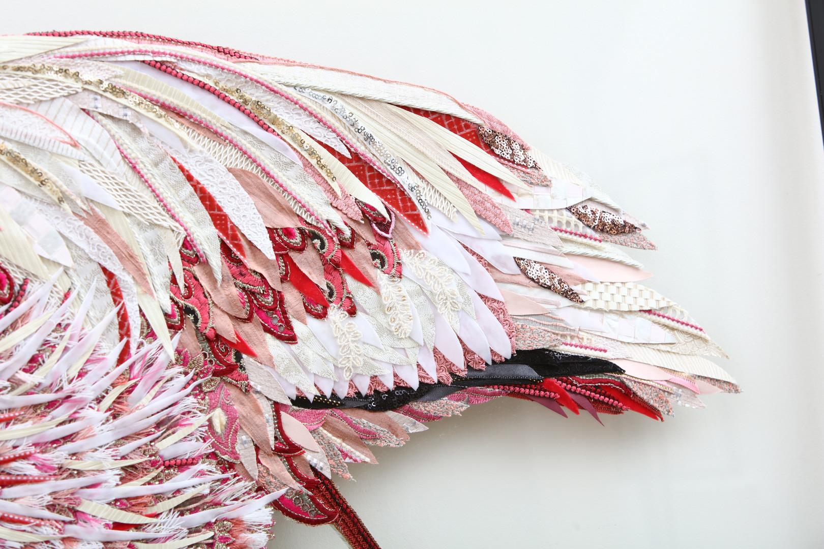 Flamingo Tail Feather