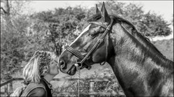 Creative and natural bespoke equine portrait photography- Wiltshire