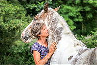 equinephotography-wiltshire-copyright-al