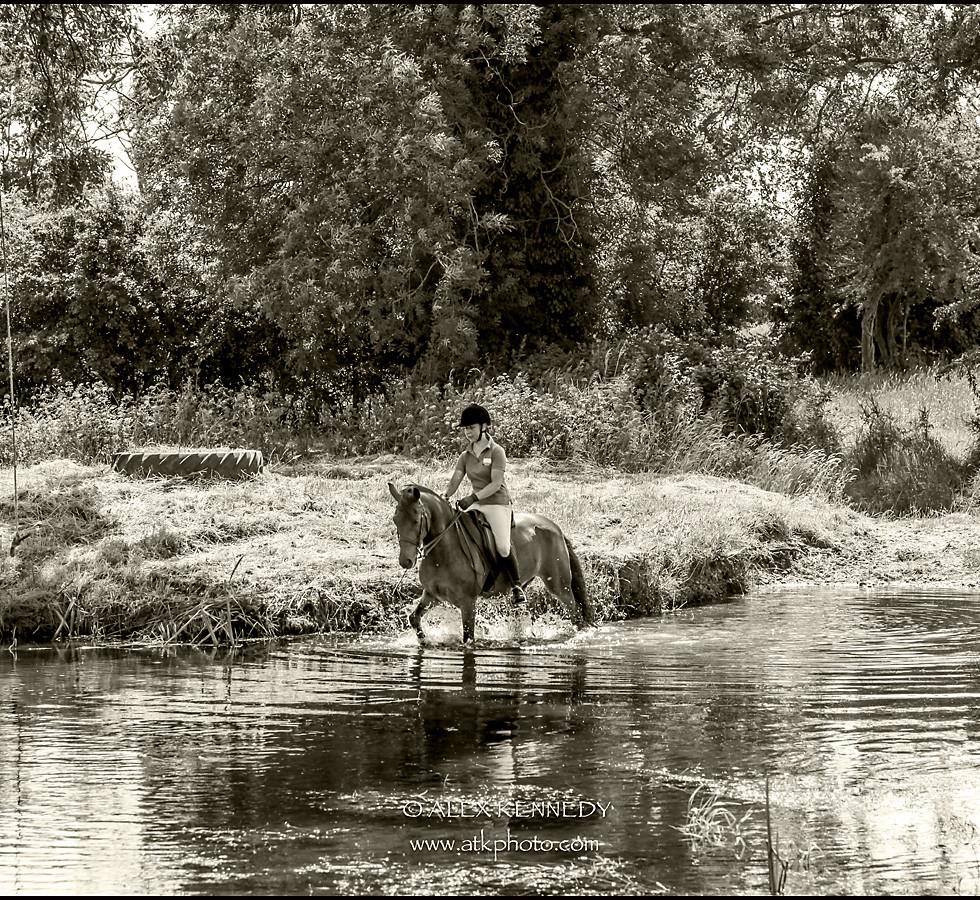 Classic bespoke equine portrait photography in Dorset