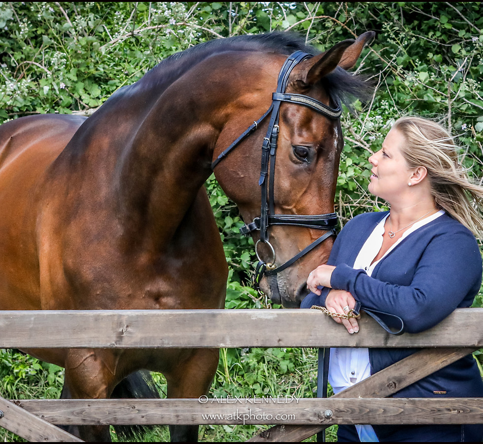 Equine portrait photography in Wiltshire