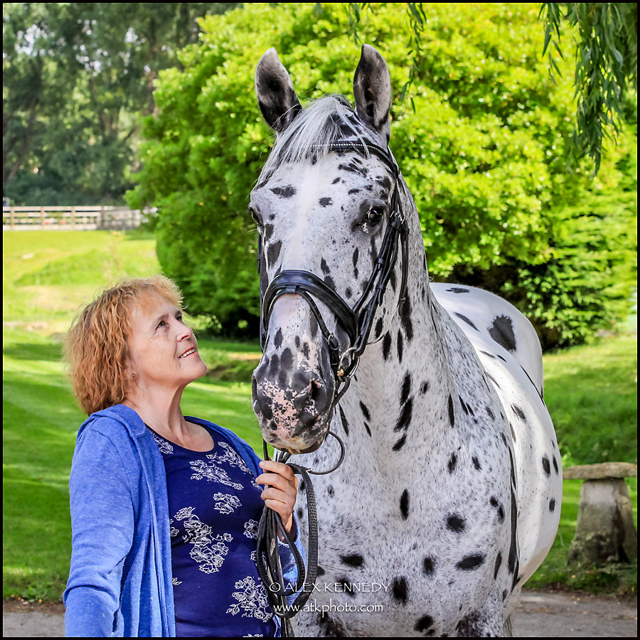 Contemporary bespoke equine portrait photography in Wiltshire - Anne Dunham OBE