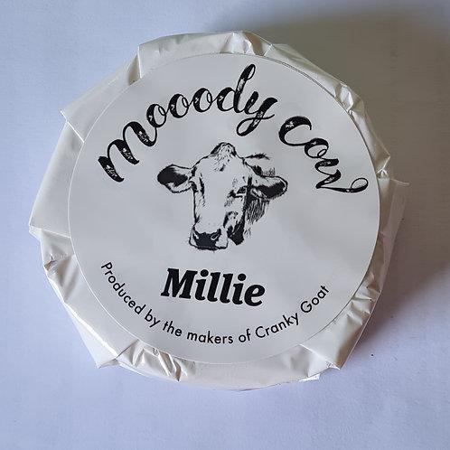 Mooody Cow Millie