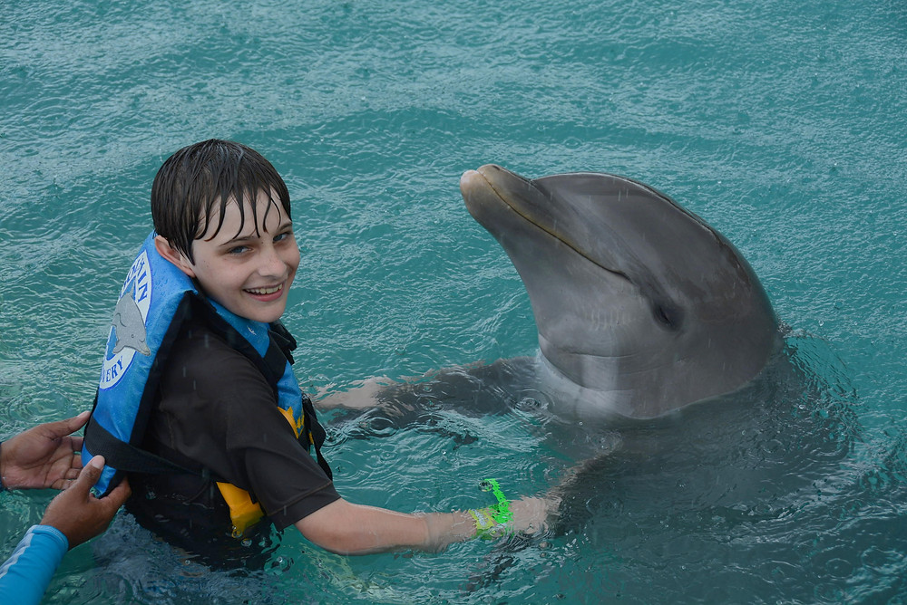 Swim with Dolphins Grand Cayman
