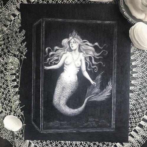 The Siren - Fine Art Print