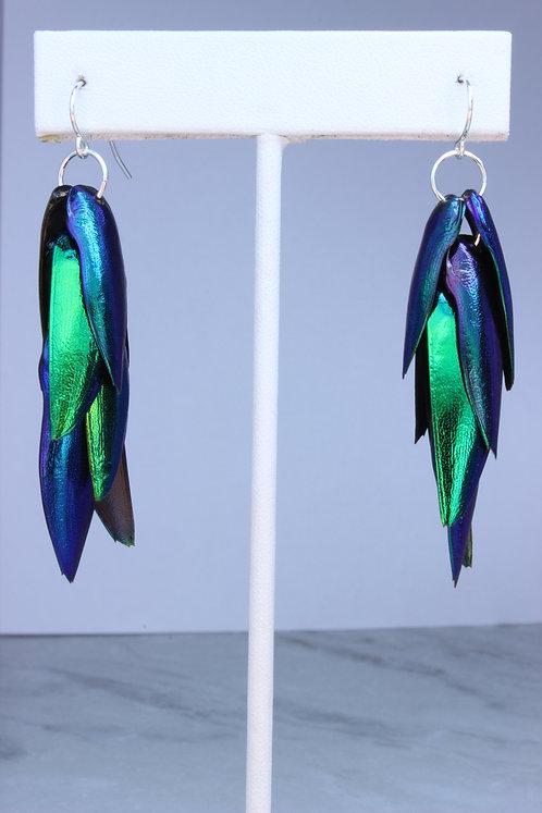 Genuine Beetle Wing Earrings