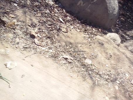Abandono de Casas Rurais em Itinga-MG:  a observação de um pedaço de estrada