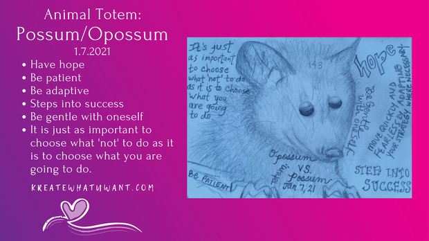 Animal Totem: Possum/Opossum.png
