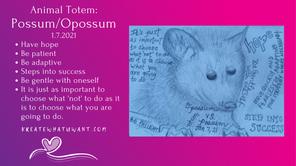 Animal Totem: Possum/Opossum.png