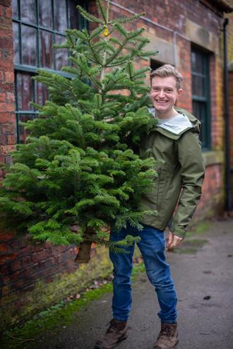 Leafy Lytham Christmas Trees