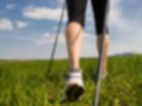 nordicwalking2.jpg