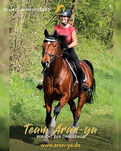 2020-05-26 Pferd (PLAN D) .jpg