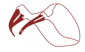 InsigniaMask_Front_A.png