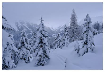 WinterPix_010.jpg