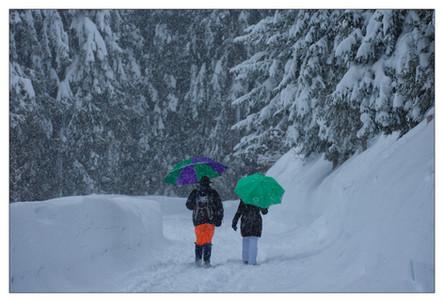 WinterPix_005.jpg