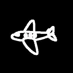 Aeroplane.png