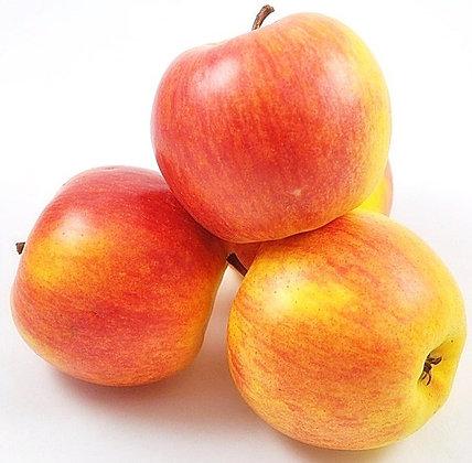 Яблоки Чемпион 1кг