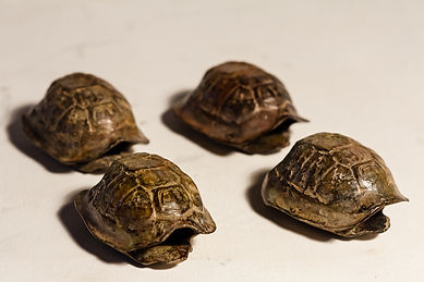 Sarel-Petrus-Small-Tortoises-Bronze-R126