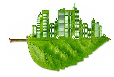 green-materials1-1024x693.jpg