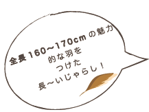 スクリーンショット 2021-04-09 13.27.35.png